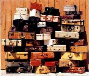 saffrons rule suitcases