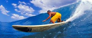 saffrons rule longboard surfing