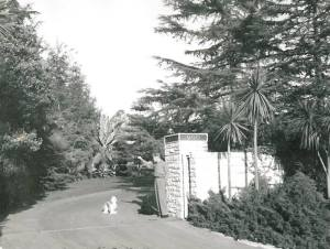 Bel Air Estate 6
