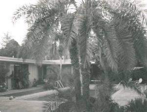 Bel Air Estate 9