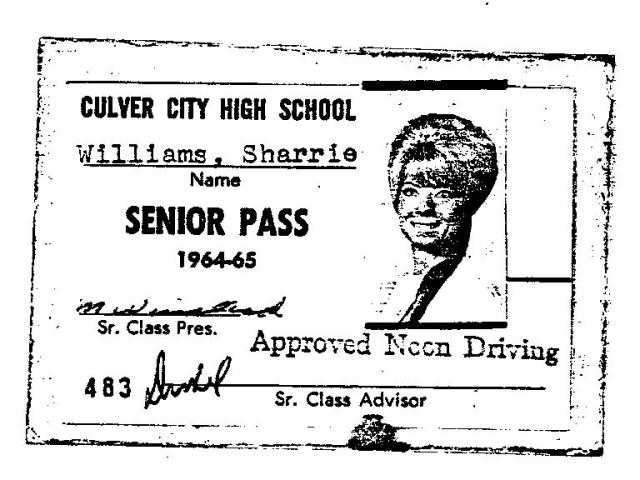 saffrons rule senior pass
